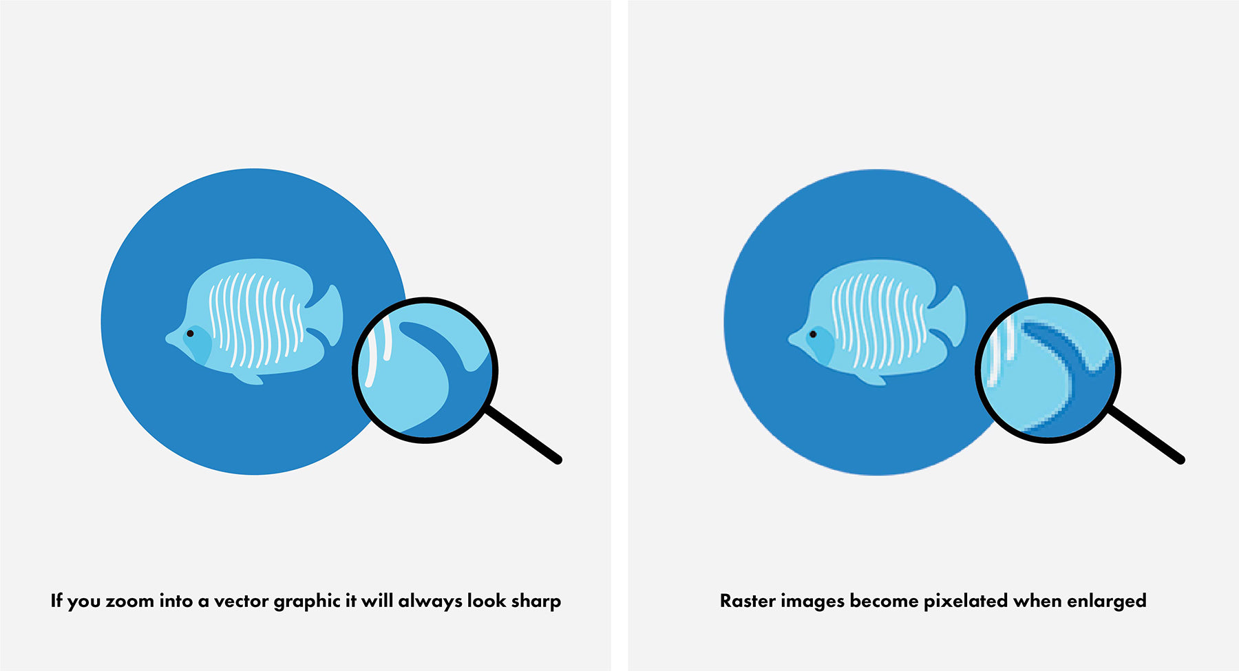 Vector and Raster images difference