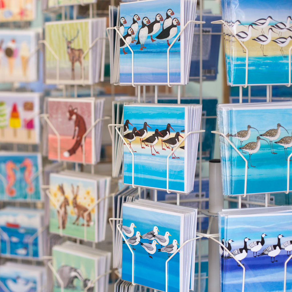 Greetings Cards by Joanne Wishart. Card designs include bird and coastal themes.