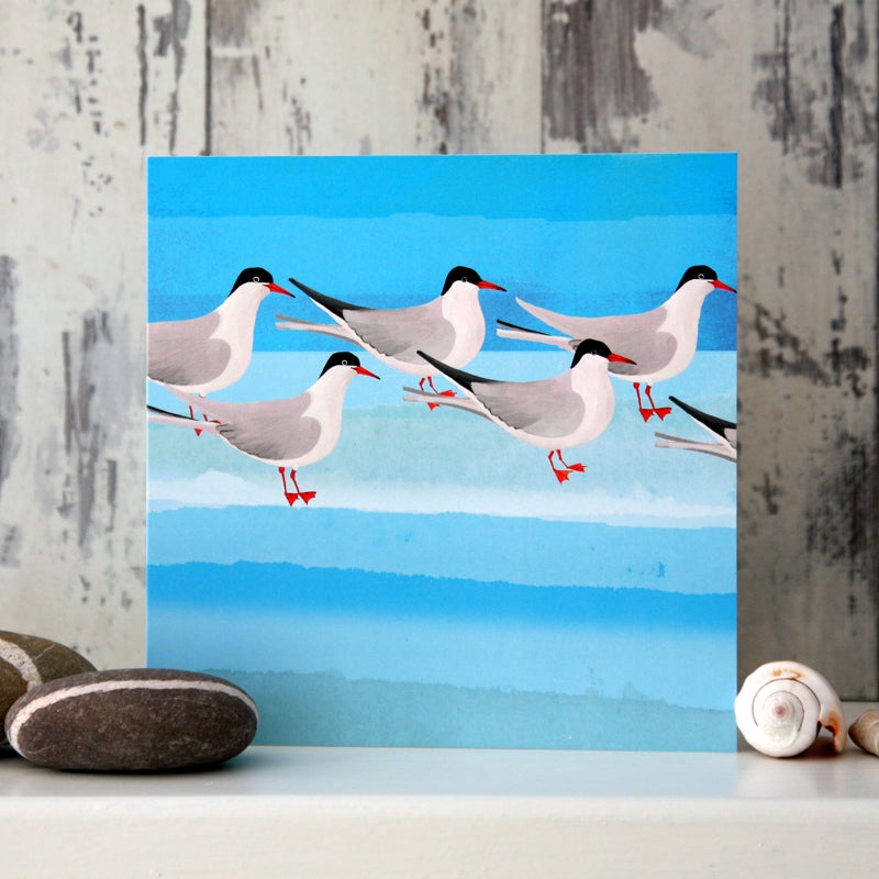 Arctic Terns - Card