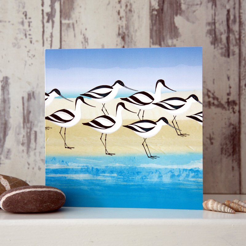 Avocets - Card
