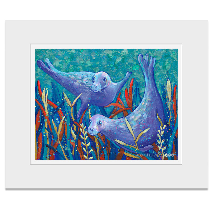 A mounted print of two great seals swimming underwater in amongst the seaweed.