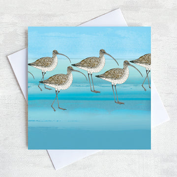 Brown curlew greetings card