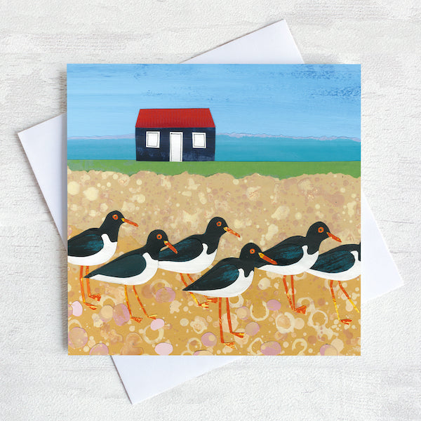 A greetings card featuring a flock of oystercatchers on a pebbled beach with a fisherman's hut in the background.