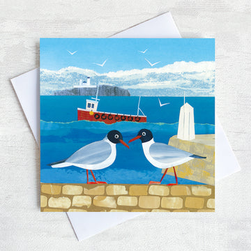 A northumberland greetings card featuring two black headed gulls on a harbour wall in front of the sea and farne islands.