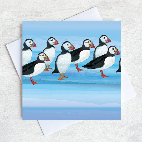 puffins illustrated greetings card