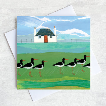 A scottish greetings card featuring a traditional cottage with a flock of oystercatchers in the field.