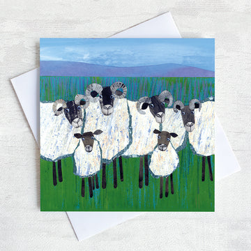 A rural greetings card featuring a quirky flock of sheep  with lambs huddled.