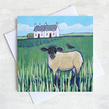 A scottish greetings card featuring a white stone cottage with a black headed sheep in the field in front with a starling on its back.