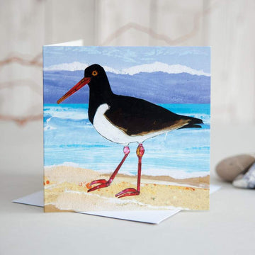 Oystercatcher on Sand Greetings Card