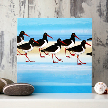 Oystercatchers Greetings Card