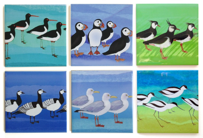 6 Shorebird Ceramic Coasters