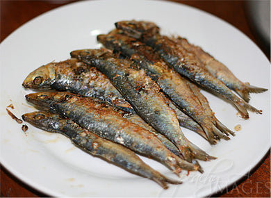 AA1 Dried Herring/Tuyo