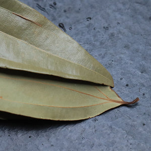 Raw bay leaf