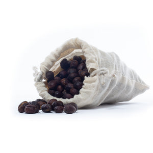 Zizira Raw Un-roasted Coffee Fruits from Meghalaya 1Kg