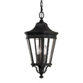Feiss FE/COTSLN8/M BK Cotswold Lane 2 Light Medium hanging-lantern - Black