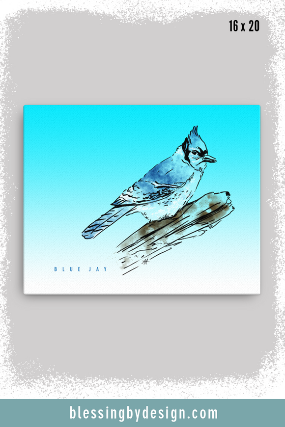 Texas Critters Blue Jay | 16x20 Canvas Print