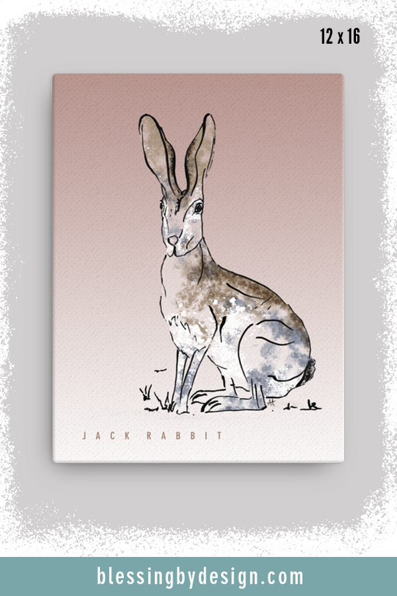 Texas Critters Jack Rabbit | 12x16 Canvas Print