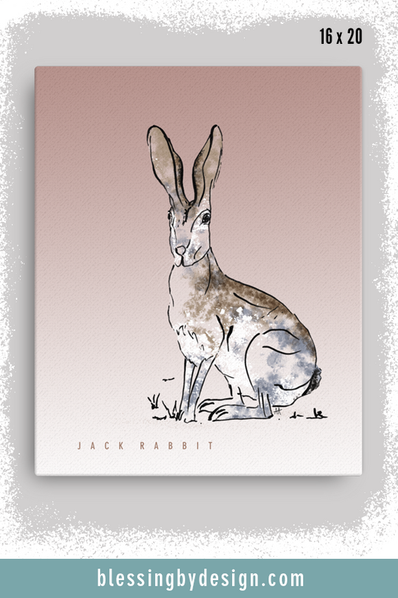 Texas Critters Jack Rabbit | 16x20 Canvas Print