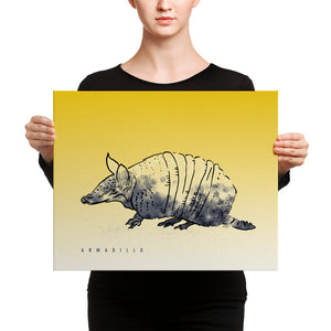 Texas Critters Armadillo | 16x20 Canvas Print
