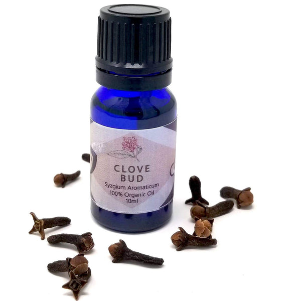 Clove Bud Essential Oil - alter8.com