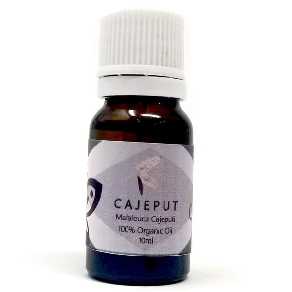 Cajeput Essential Oil - alter8.com