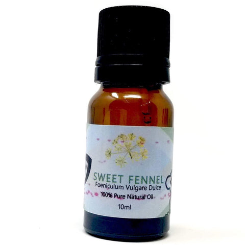 Sweet Fennel - alter8.com