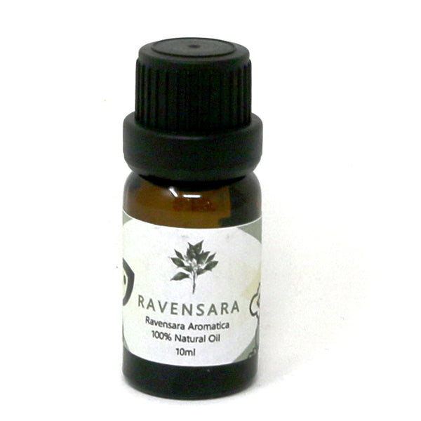 Ravensara Essential Oil - alter8.com