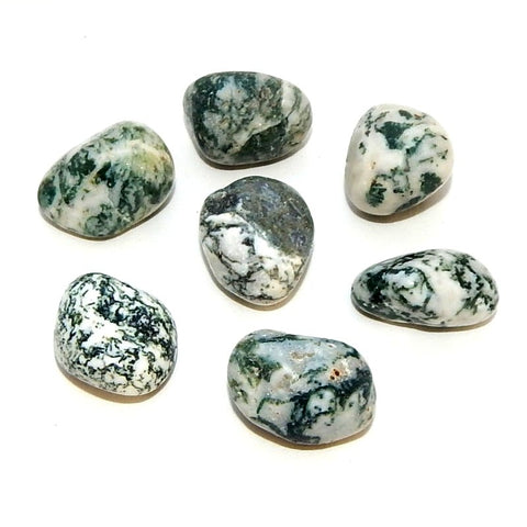 Tree Agate Tumbled (Dendritic) - alter8.com