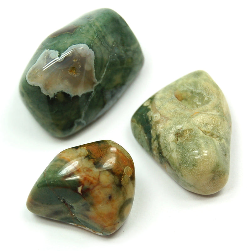 Rainforest (Rhyolite) Jasper Tumbled - alter8.com
