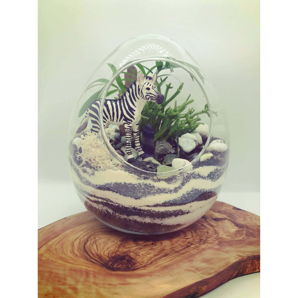 Globe and Snail Terrariums - alter8.com