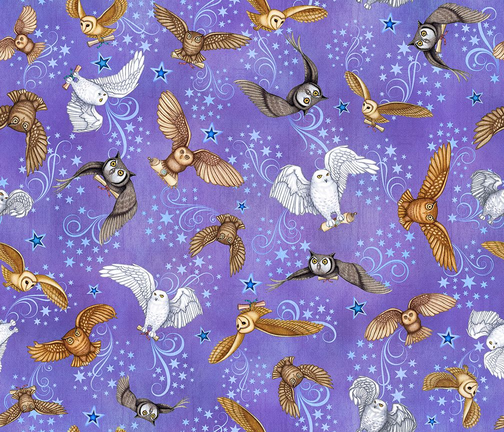 COTTON - Spellbound - Owls - Quilting Treasures (1/2 yard)