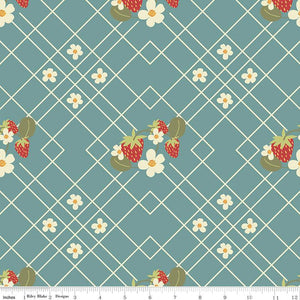 riley blake fabric strawberry