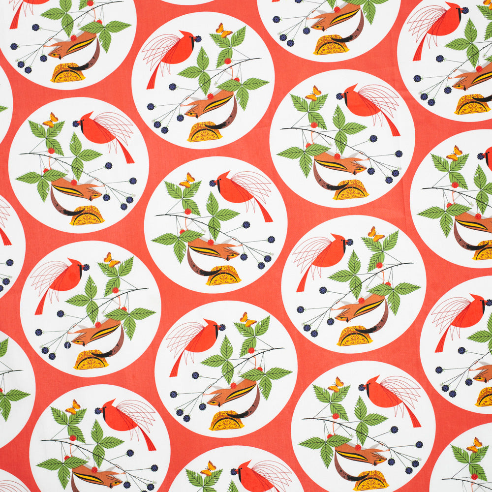 ORGANIC COTTON - quilting/poplins - Charley Harper - Good World - Birch Organic Fabric (1/2 yard)