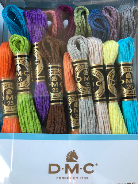 DMC 16 skein exclusive colour floss