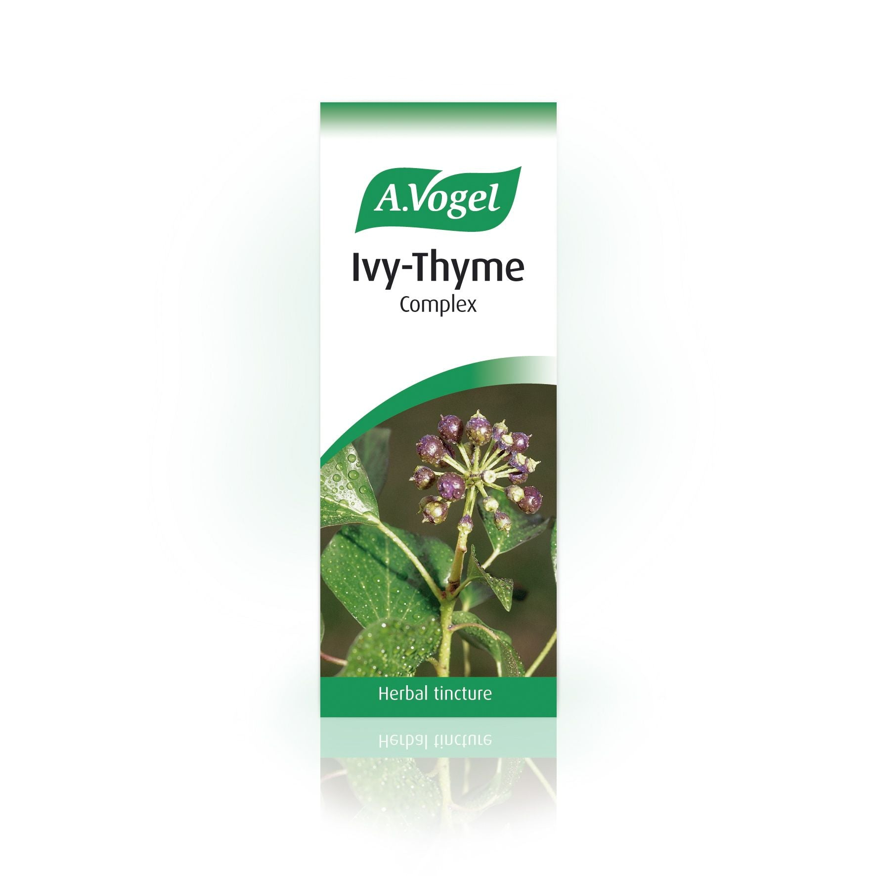 A. Vogel Ivy-Thyme Complex
