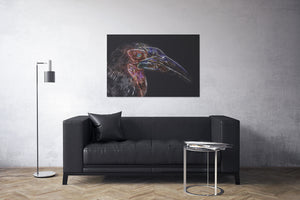 Southern Ground Hornbill Canvas Print | Photos by Petrus Bester