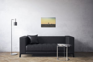 Lone Tree at Sunset Canvas Print | Photos by Petrus Bester