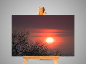 Sun Setting in the Low-veld Canvas Print | Photos by Petrus Bester