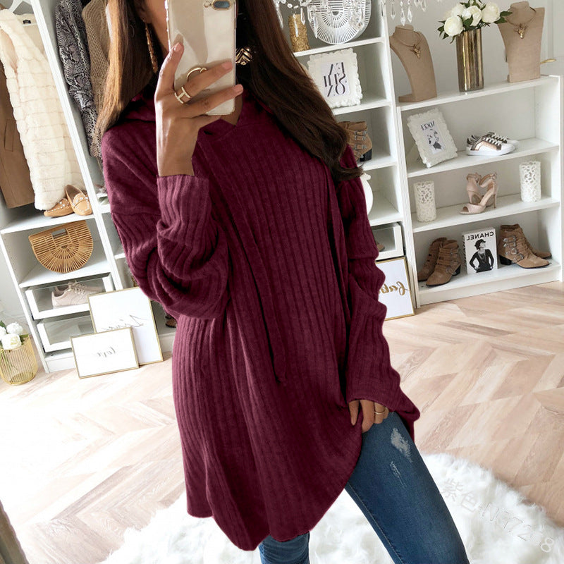 Casual Fall Drawstring Plain Women Hoodies