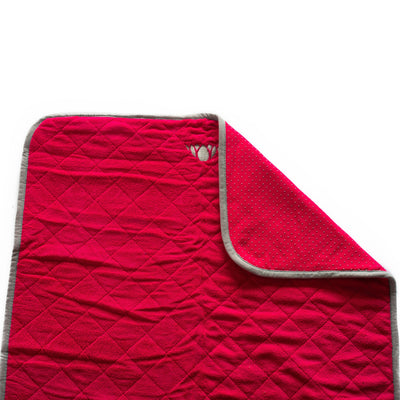 WAYmat Raspberry
