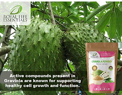 Graviola Soursop Guanabana Paw Paw Leaf Powder Herbal Supplement (2oz) Wild Crafted