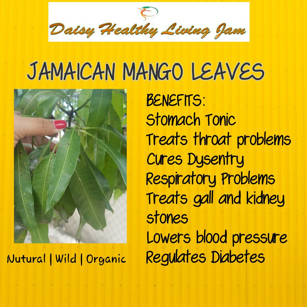 Jamaican Mango Leaves