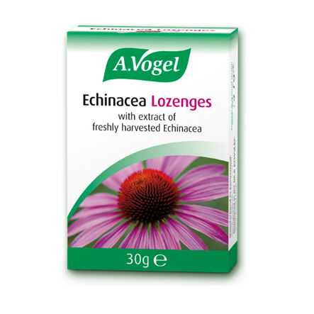 A. Vogel Echinacea Lozenges 30g - Medipharm Online - Cheap Online Pharmacy Dublin Ireland Europe Best Price