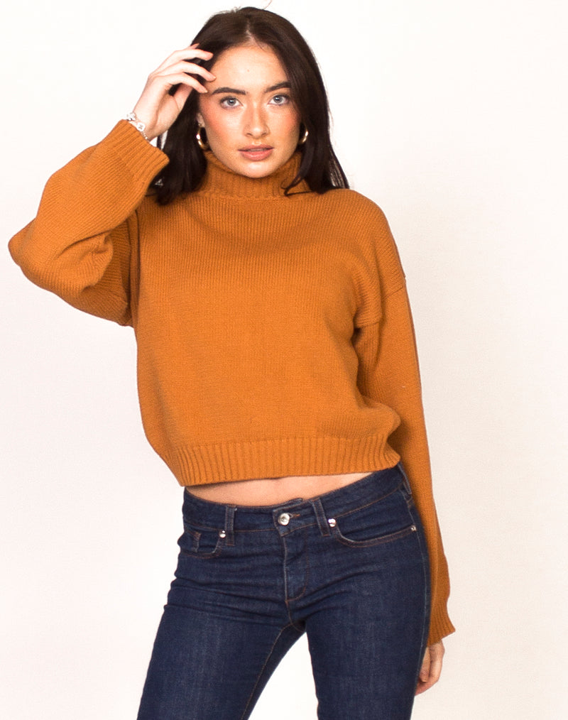 PUMPKIN HIGH NECK CROPPED JUMPER