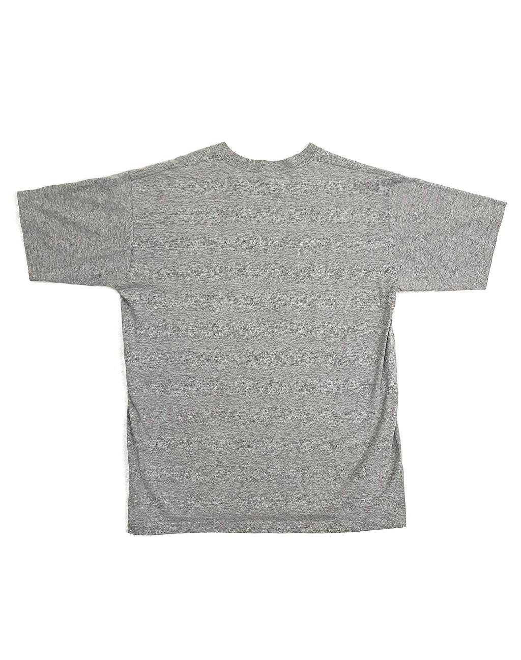 NORTH FACE GREY LOGO TEE