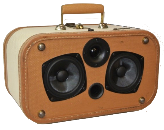 Brown Buster Sonic Suitcase