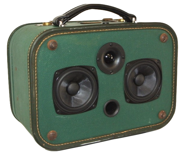 Green Hayes Sonic Suitcase