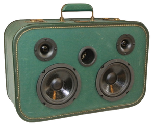 Green Sleeve Sonic Suitcase