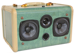 Green Winwood Sonic Suitcase