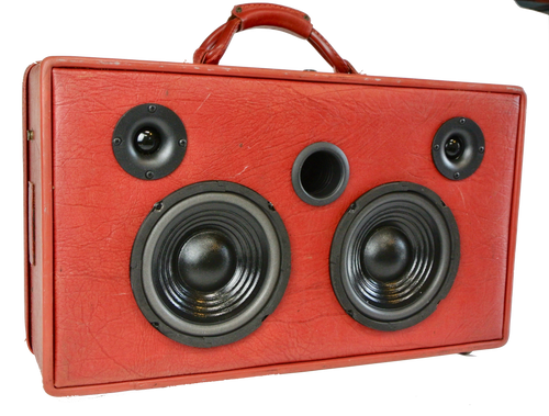 Red Sleeves Sonic Suitcase